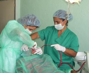 Cirugia Basica